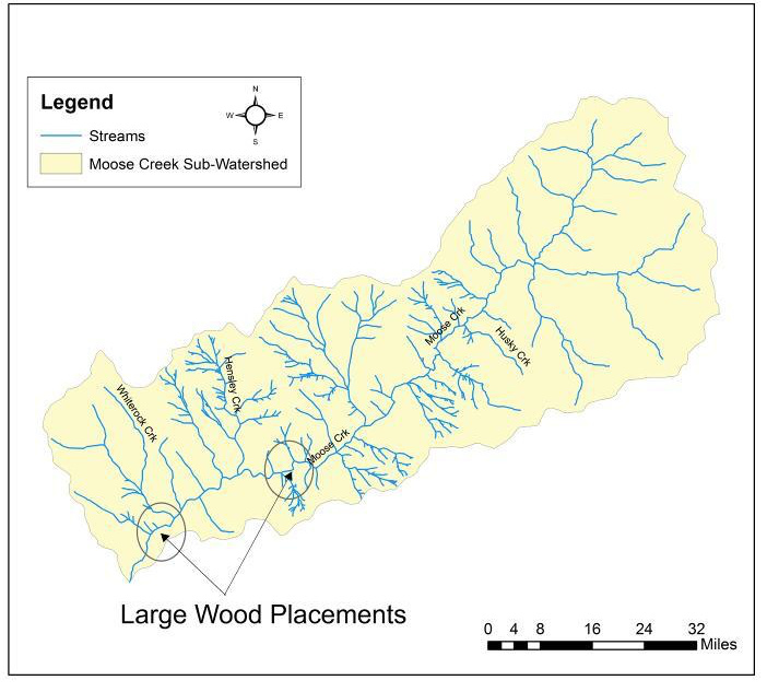 Moose Creek restoration wood placements